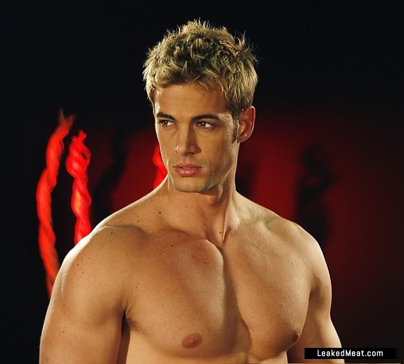 william levy gay