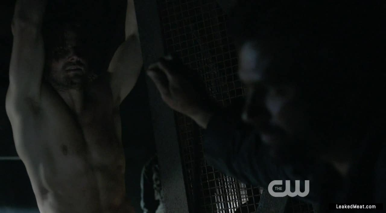 Stephen Amell hunk