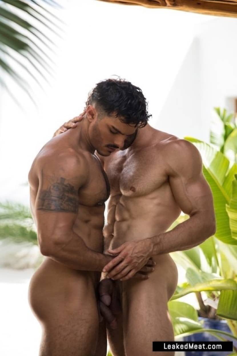 Davide Zongoli hard dick
