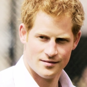 Prince Harry stud